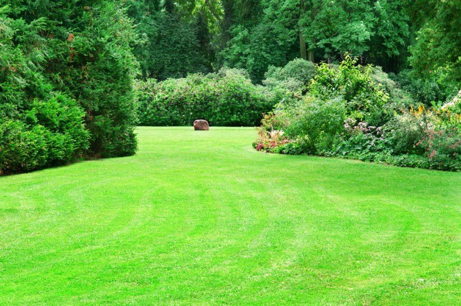 Conception de jardin, une prestation conforme à vos attentes